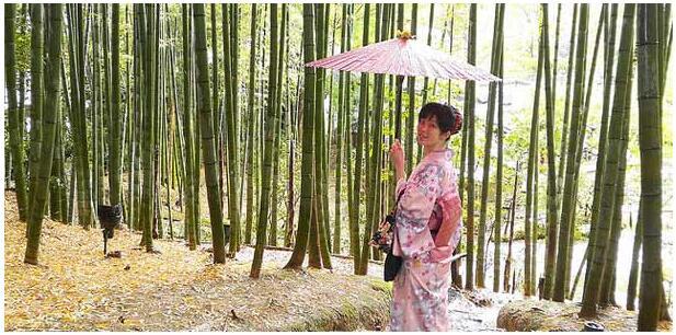KYOTO AS A DESTINATION