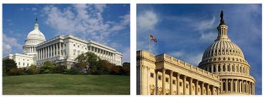 Washington Government