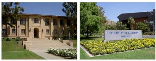 University of California, Riverside 1